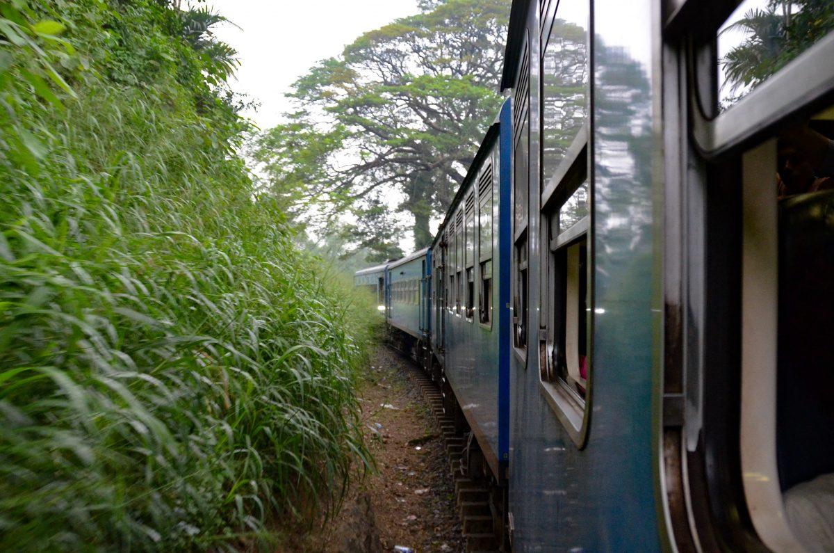 004 – Sri Lanka – Wir fahren mit der Bahn nach Kandy in die Berge und erleben wieder zauberhafte Momente