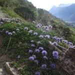 022 – Schweiz – Wanderung entlang der Südrampe im Wallis