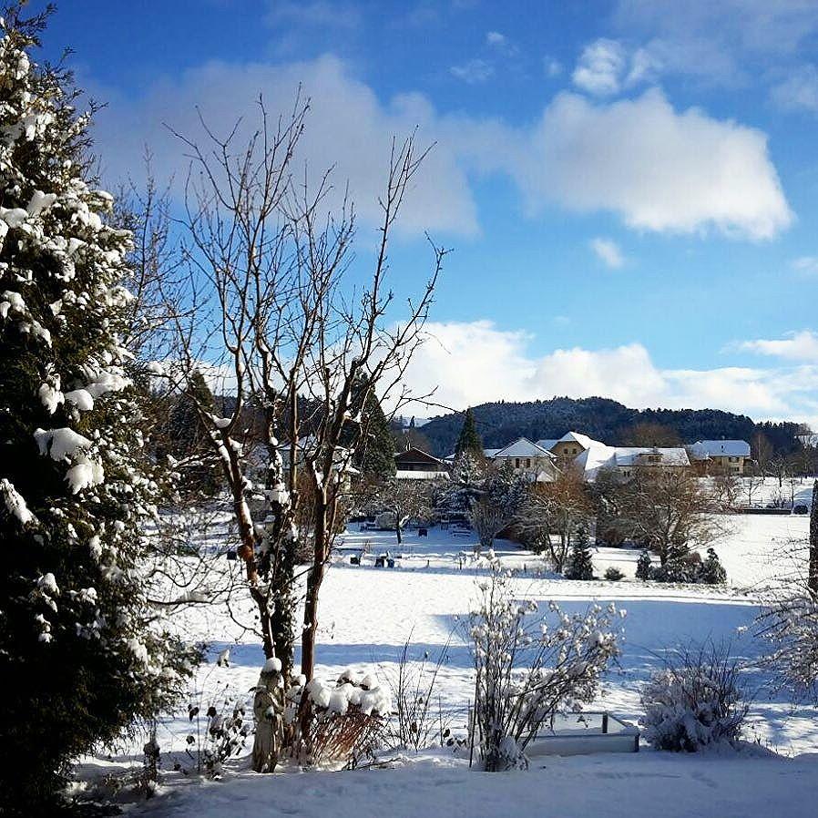 Guten Morgen Aus Dem Winter Wonder Land Dieses Jahr
