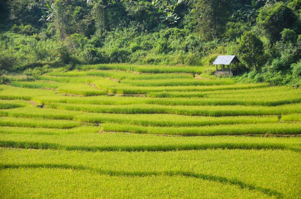 082 – Abenteuer Laos – Eintauchen in die Bergwelt im Norden von Laos