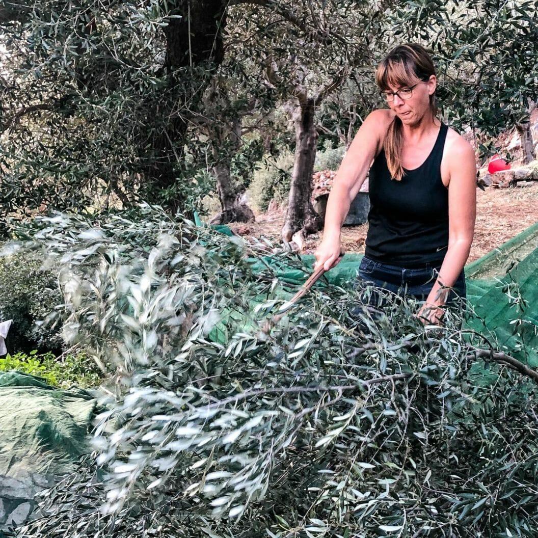 119 – Griechenland, Olivenernte, Sport und so viele Geschenke – Grosse Reise